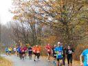 pólmaraton 2015