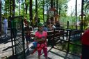 Jedlina park 2017