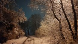 zima 2021